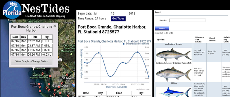Fishing tide chart tide apps for iphone and android for Tides for fishing louisiana
